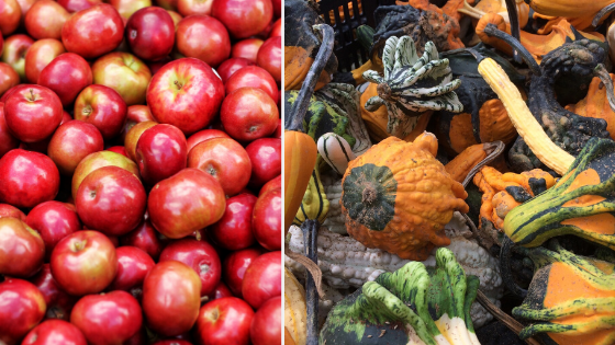 Homestead's Local Fall Produce & Holiday Menu